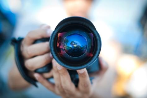 10 argomenti di cui gli italiani sono espertissimi alla faccia delle capre ignoranti - fotografia
